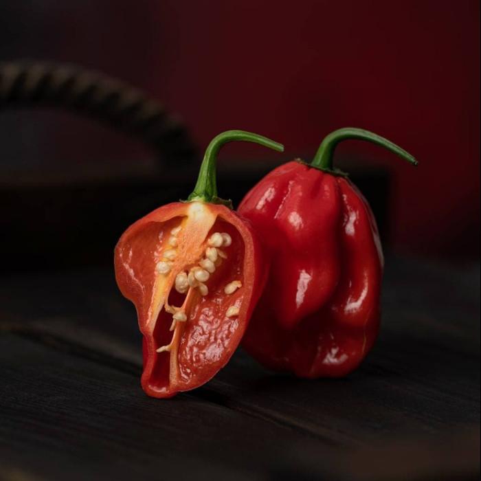 Насіння Habanero Red